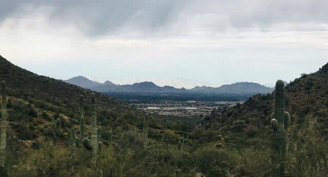 A picture of downtown Phoenix from atop a mountain